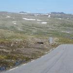 Śnieżną drogą do Hjelledalen (20/63)