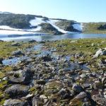 Śnieżną drogą do Hjelledalen (23/63)