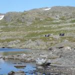 Śnieżną drogą do Hjelledalen (25/63)