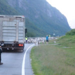 Śnieżną drogą do Hjelledalen (34/63)