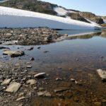Śnieżną drogą do Hjelledalen (49/63)